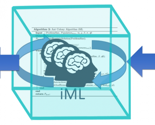 iML-human-in-the-loop-glassbox-machine-learning-quad